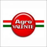 logo-Agrovalente
